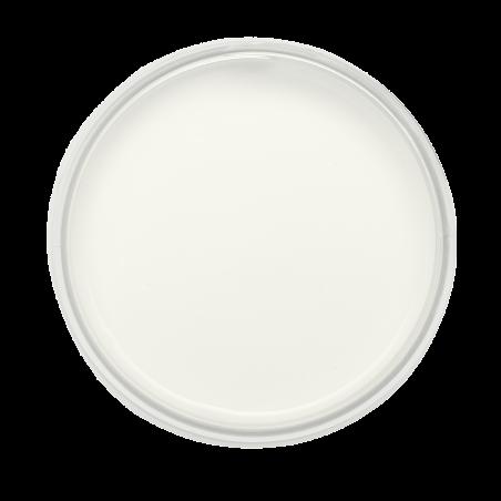 Satinelle peinture acrylique Blanc